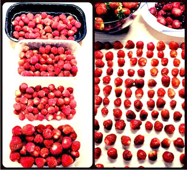 Фото - Как замораживать клубнику на зиму и что можно из неё приготовить.